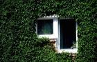 Як мешканцям закарпатських багатоповерхівок отримати європейські гроші на утримання будинків