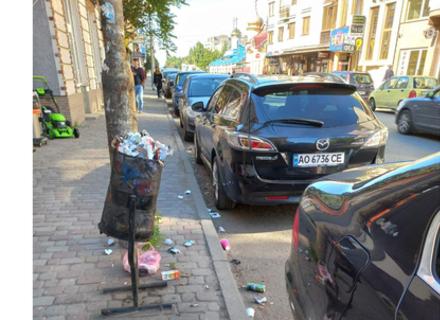 В Ужгороді від залізничного вокзалу і до центру міста брудні вулиці та некошені газони (ФОТО)