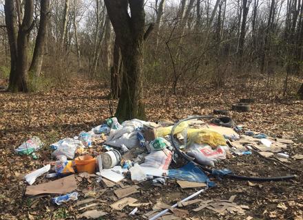 Ужгородці перетворили тильний бік Боздоського парку у суцільне сміттєзвалище (ФОТО)
