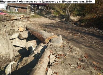 Екологи підказують місцевим громадам Закарпаття, як краще доглядати за лісом