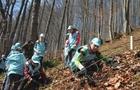 На Рахівщині дерева висаджували на висоті 800 метрів