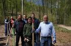 Як керівництво Закарпаття ліс висаджувало на кордоні зі Словаччиною