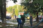 Працівники Водоканалу на місці аварії водопроводу в Ужгороді вирвали з корінням молоде дерево (ФОТО)