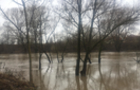 Максимальний рівень води у закарпатських річках очікується в п'ятницю
