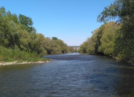 Закарпаттям протікає 10 тисяч річок, їхня загальна довжина 19 тисяч кілометрів