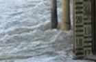 На Закарпатті різко піднімається вода в річках. Утворилися заплави