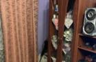 20-річна Мукачівка викрала у знайомого 10 тисяч гривень