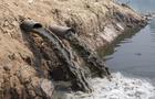 Мукачівці плавають у річці, яка наповнена нечистотами з навколишніх сіл (ВІДЕО)