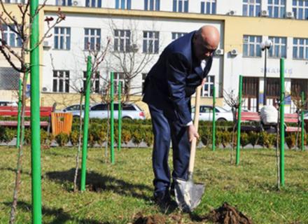 В Ужгороді перед будівлею ОДА Москаль посадив ялинку