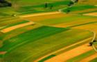 Держпідприємство незаконно передало землю фермерському господарству